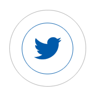 icono-twiter